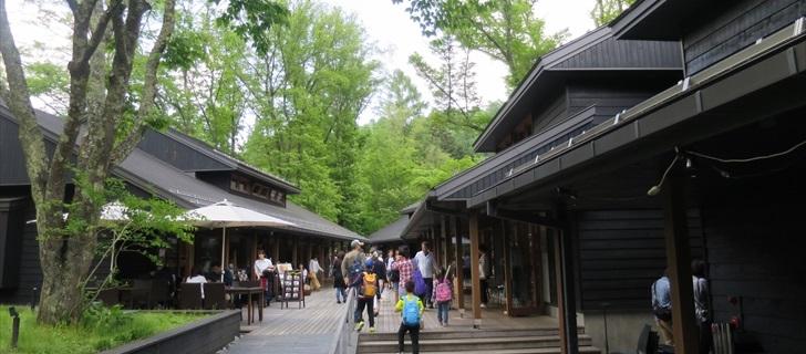 軽井沢星野エリアのハルニレテラスが新緑に包まれています