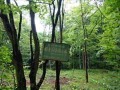 軽井沢小鳥の森