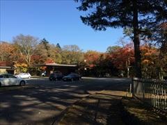 ホテル鹿島ノ森正面 紅葉