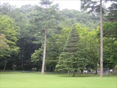 ホテル鹿島ノ森 お庭
