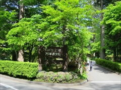 万平ホテル 若葉 新緑 軽井沢