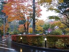 万平ホテル お庭 紅葉