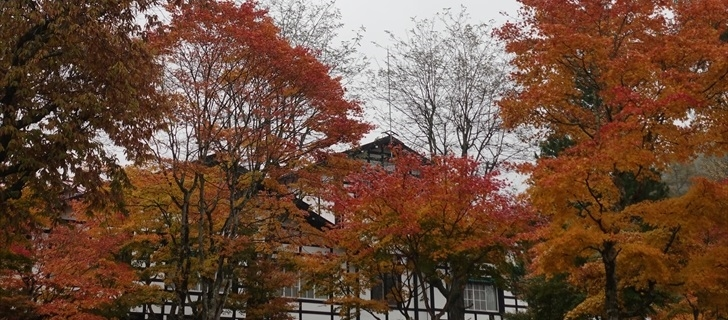 軽井沢 万平ホテル 紅葉 2017年10月28日雨