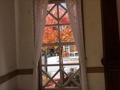 建物内から紅葉