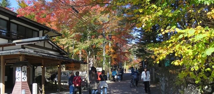 軽井沢のつるや旅館周辺の紅葉が見頃です