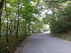 赤岩橋〜野鳥の森方面