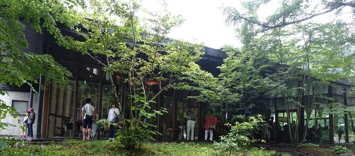 軽井沢星野エリアの村民食堂も深い緑で包まれてます