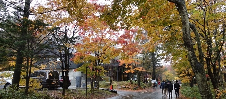 軽井沢 星野エリア 村民食堂 紅葉が最盛期 2017年10月29日雨