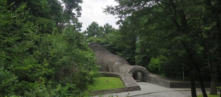 石の教会は真夏の深い緑の木々に包まれています