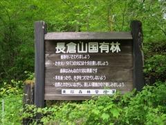 長倉山国有林