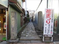 神宮寺入口 花まつり