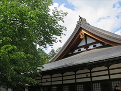 神宮寺 若葉 新緑 軽井沢