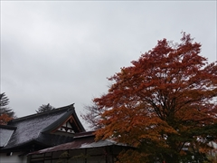神宮寺 境内