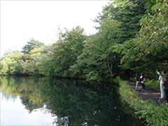 軽井沢 雲場池 色付き始めた雲場池