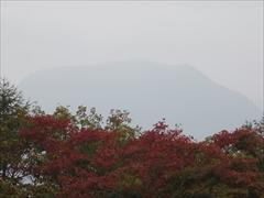見晴台から離山 紅葉