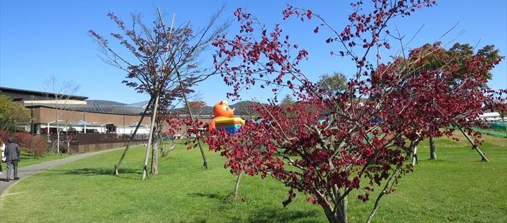 軽井沢のアウトレットの紅葉が始まりました
