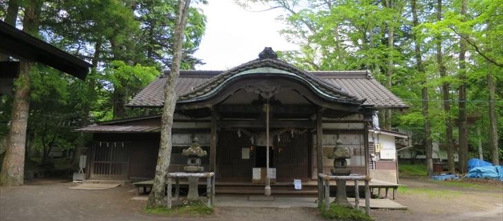 諏訪神社が新緑に包まれています