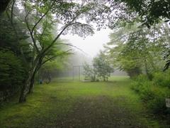 諏訪の森公園 濃霧