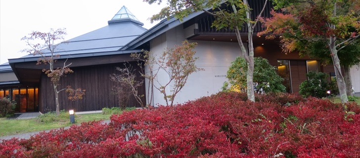 大賀ホールのドウダンツツジの紅葉が見頃です