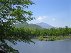 新緑・離山・浅間山