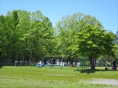 矢ヶ崎公園遊具