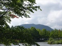 山桜越しに離山