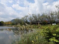 軽井沢 矢ヶ崎公園・大賀ホール 矢ヶ崎公園
