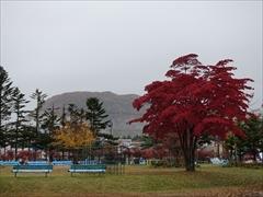 軽井沢 矢ヶ崎公園 紅葉 29日雨
