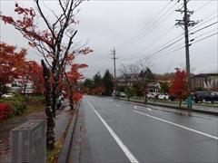 軽井沢 大賀通り 紅葉 29日雨