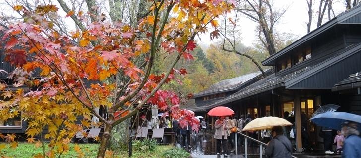 軽井沢 星野エリア ハルニレテラス 2017年10月29日雨