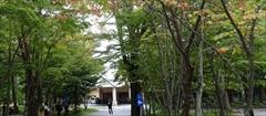 軽井沢 ホテルブレストンコート