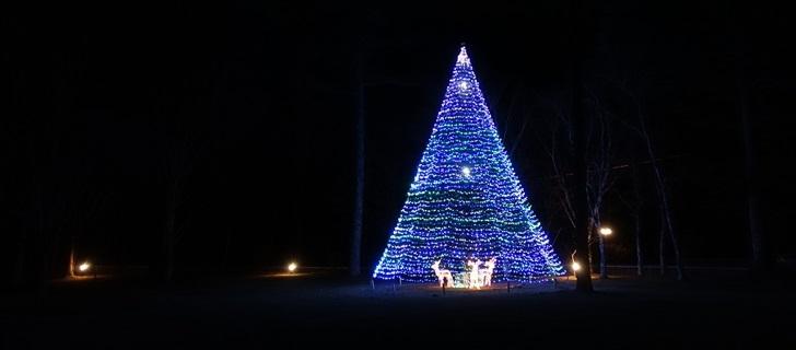 軽井沢で一番に美しいクリスマスツリーだと思う 2017年11月26日