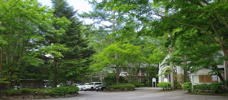 軽井沢のホテル音羽ノ森が新緑になっています