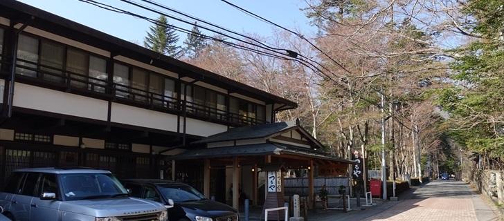 軽井沢 つるや旅館 春 モミジの新芽 2018年4月21日