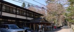 軽井沢 つるや旅館 桜