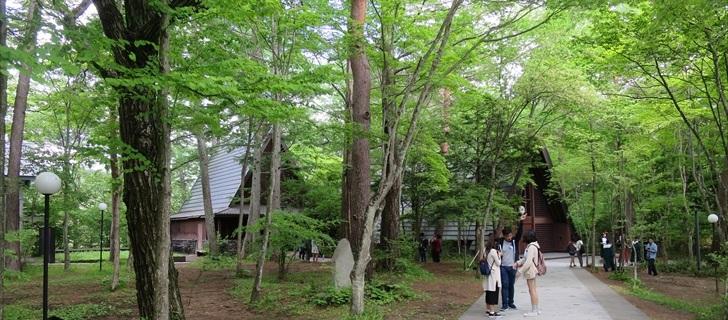軽井沢高原教会が新緑に包まれています