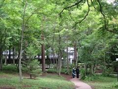 軽井沢高原教会の庭
