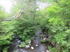 赤石橋から湯川を望む