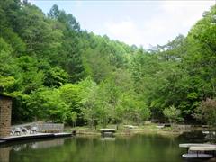ピッキオ ケラケラ池