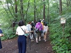 雑木林の遊歩道に入る