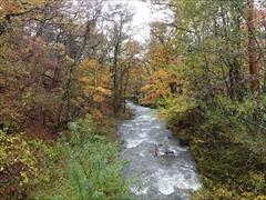 軽井沢 赤岩橋から湯川を望む 紅葉