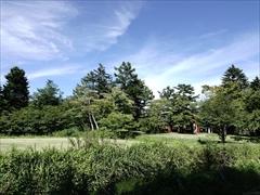 軽井沢 プリンスホテルウエスト 正面付近から桜並木