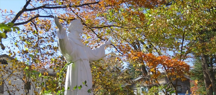 聖パウロカトリック教会の紅葉が見頃です