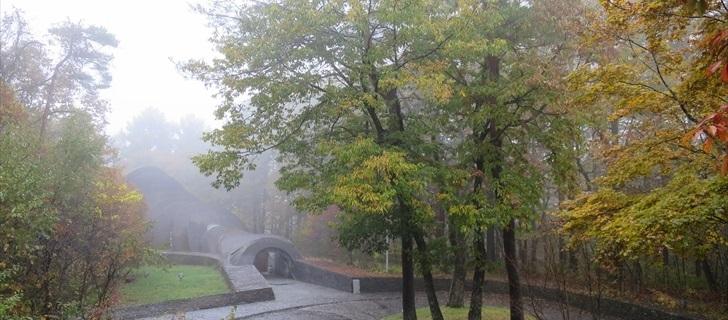 軽井沢 軽井沢 星野エリア 石の教会 紅葉 2017年10月29日雨