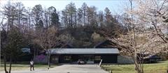 軽井沢 トンボの湯 桜
