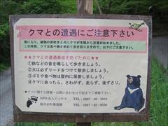 クマとの遭遇にご注意