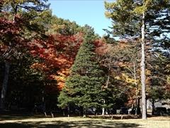 ホテル鹿島ノ森 2018.10.29