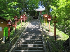 熊野皇大神社 若葉 新緑 軽井沢