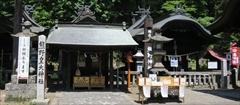 軽井沢 熊野皇大神社 若葉
