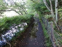 軽井沢 雲場池 雲場池 遊歩道